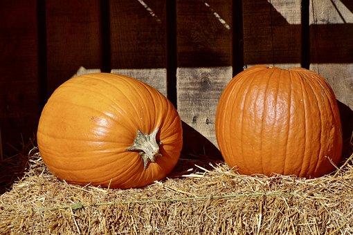 Pumpkins, Orange, Hay, Farm, Autumn, Halloween, Harvest