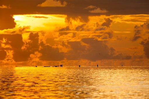 Landscape, Chaoyang, The Shallow Sea, Fisherman