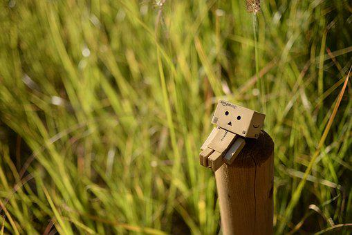 Autumn, Danbo, Doll, Figures, Loneliness, Nyangbo, Toy