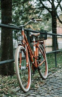 Bike, Means Of Transport, Traffic, Transport