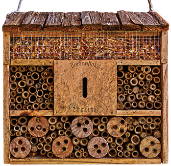 Insect Hotel, Shelter, Nesting Help