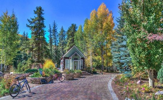 Foliage, Vail, Colorado, Park, Cottage, Path