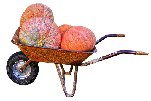 Pumpkin, Giant Pumpkin, Wheelbarrow, Autumn