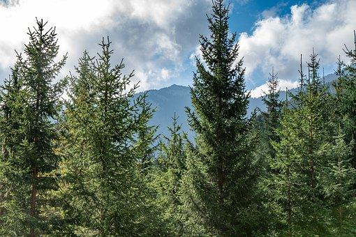 Mountain, Sky, Clouds, Landscape, Nature, Peak