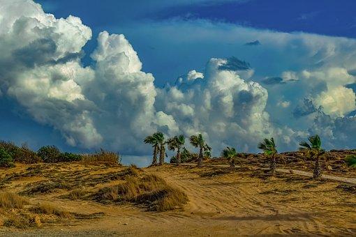 Landscape, Palm Trees, Dunes, Path, Nature, Sky, Clouds