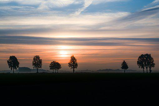 Trees, Sunrise, Silhouette, Landscape, Nature, Scenic