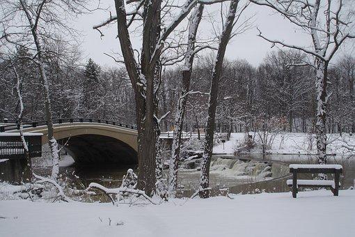 Winter, Landscape, Snow, Cold, Trees, Bridge, Bench