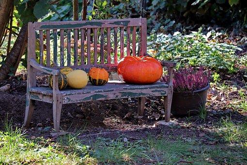 Garden Bench, Autumn, Pumpkin, Wooden Bench, Mood