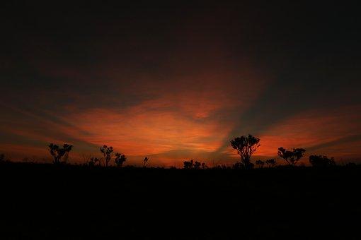Sunset, Desert, Outback, Sunrise, Golden Rays