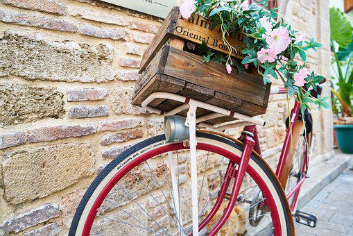 Bicycle, Flower, Flowerpot, Safe, Decor, Decoration