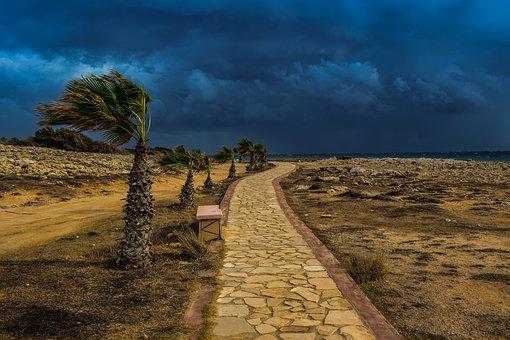 Path, Stone Path, Palm Trees, Storm, Stormy Weather