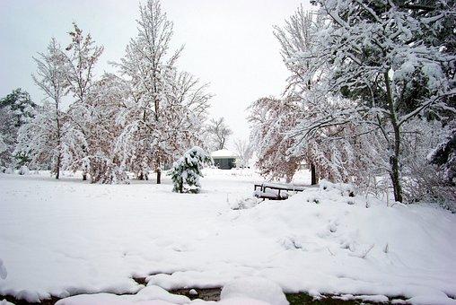Winter In The Ozarks, Ozarks, Arkansas, Cold, Winter