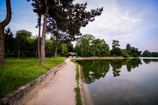 Wood, Boulogne, Green, Green Area, Nature, Paris, Space