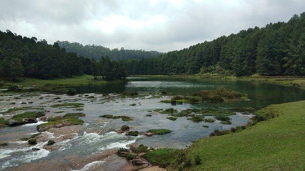 Ooty, India, Amazing Nature, Beautiful, Inspiring