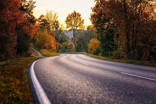 Road, Curve, S Curve, Asphalt, Route, Forest, Away