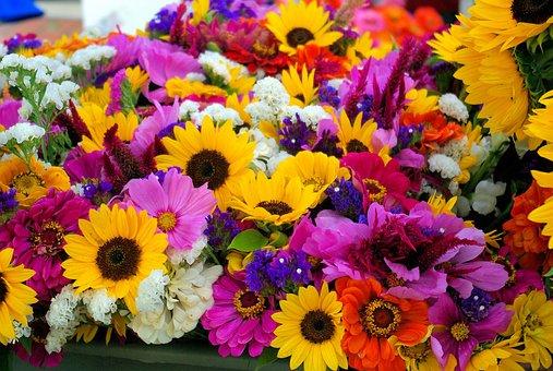 Farmers Market Mixed Flowers, Sunflowers, Flowers, Dane