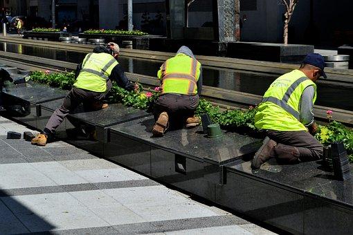 Downtown District, Employee, Worker, Gardening