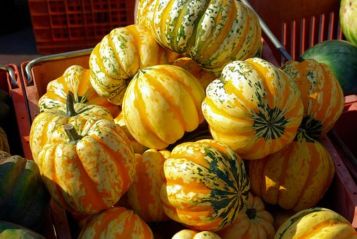Farmers Market Striped Gourds, Gourds, Farmers, Gourd