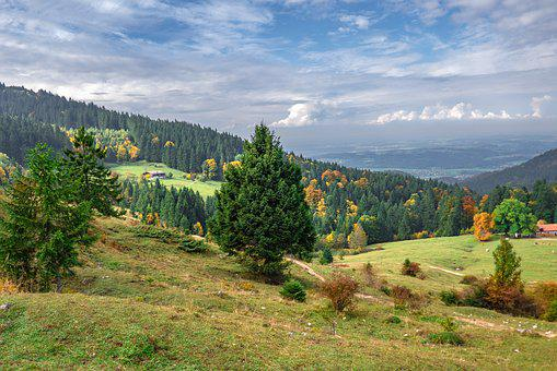 Landscape, Forest, Autumn, Hiking, Bavaria