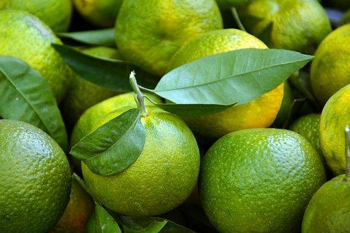 Oranges, Fruits, Fruit, Citrus Fruits, Autumn Orange