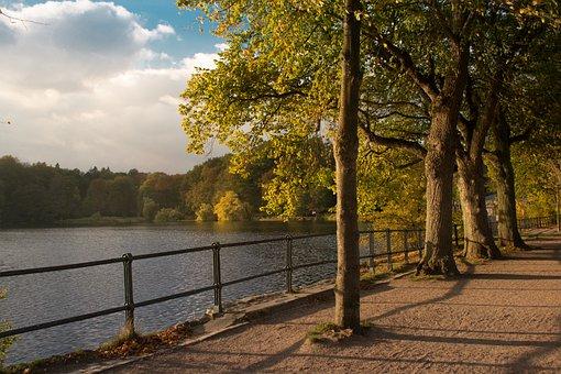 Lake, Harburg, Hamburg, Local Recreation, Mood, Autumn