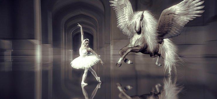 Dance, Ballet, Dancer, Horse, Wing, Hall, Elegant, Girl