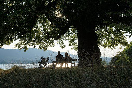 Lake, Tree, Bank, Human, Age, Old People's Home, Home