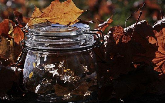 Glass, Lichterkette, Fall Foliage, Light, Bright