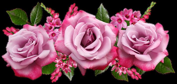 Flowers, Roses, Ixias, Arrangement, Garden, Nature