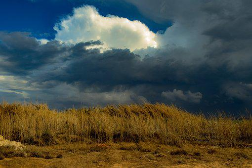 Reeds, Countryside, Dark Sky, Clouds, Nature, Landscape