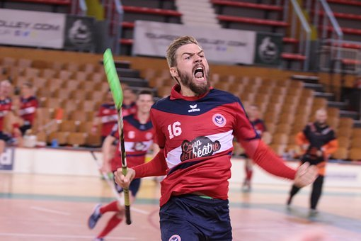 Floorball, Victory, Sport, Championship, Trophy, Game