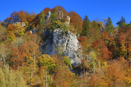 Autumn, Forest, Valley, Rock, Landscape, Mood