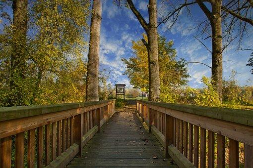 Autumn, Bridge, Landscape, Nature, River, Water, Leaves