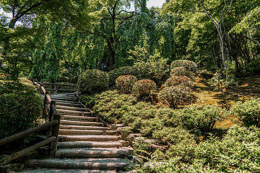 Botanical Gardens, Wooden Steps, Stairs, Nature, Climb