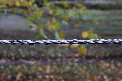 Rope, Fence, Trist, Autumn, Current, Power Fence