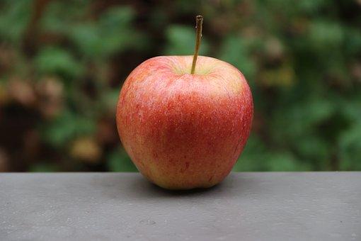 Apple, Fruit, Food, Autumn, Delicious, Vitamins