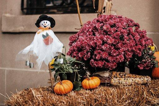 Halloween, Pumpkin, Ghost, October, Washington Dc