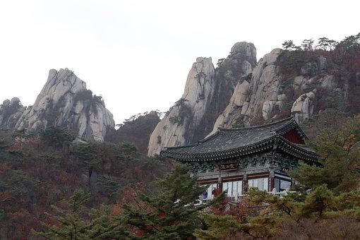 Retina Month Company, Seoul, Autumn, Section, Mountain