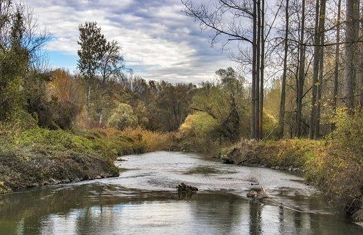 Autumn, Trees, Landscape, Nature, Clouds, River