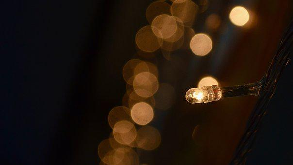 Light, Night, Lighting, Bulb, Single Light, Focus
