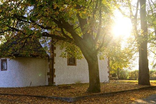 Chapel, Church, Backlighting, Sun, Sunbeam, Faith