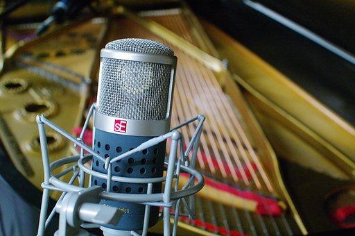 Tube Microphone, Dual Tube Microphone, Gemini