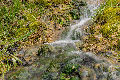 Bach, Nature, Water, Creek, Flowing, Idyllic