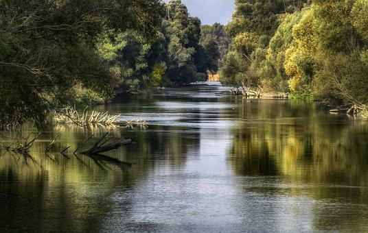 River, Landscape, Nature, Water, Wood, Forest, Waters
