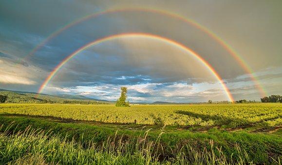 British Columbia, Canada, Farm, Farmland, Landscape