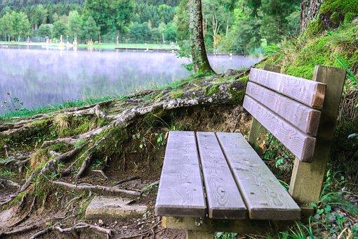 Bank, Lake, Wooden Bench, Fog, Nature, Landscape, Water