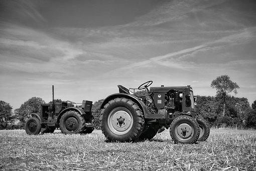 Tractor, Agriculture, Machine, Field, Oldtimer