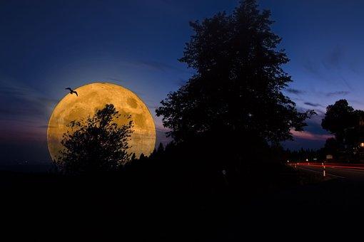 Moon, Full Moon, Super Moon, Night, Sky, Moonlight
