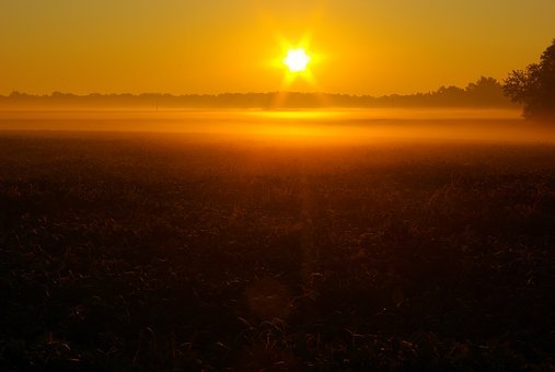 Sunrise Over Illinois Field, Dawn, Sunrise, Sun, Sky