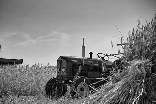 Tractor, Agriculture, Tractors, Landtechnik, Machine